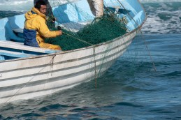 Atacan Sea Shepherd