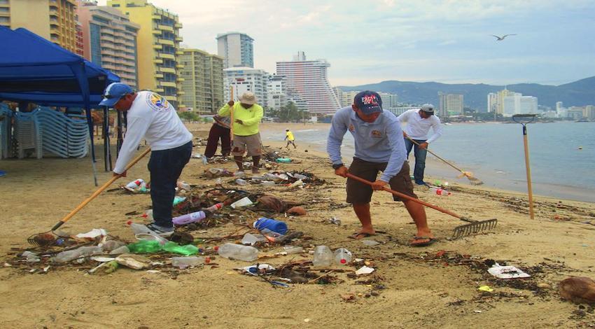 Cochinos Acapulco