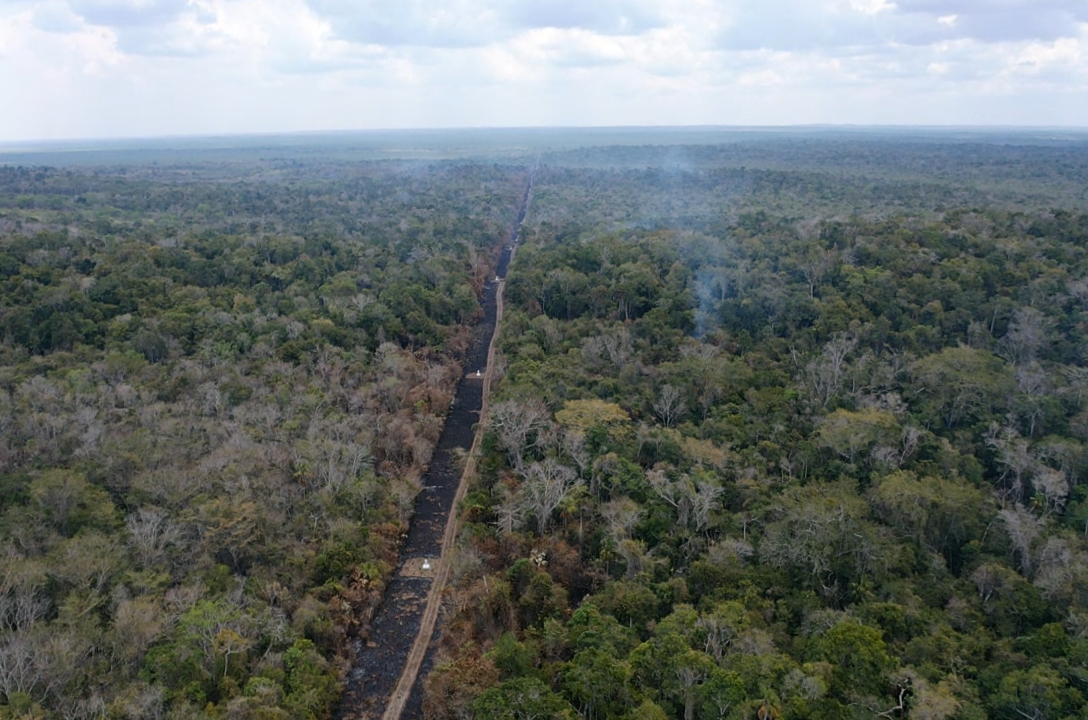 Incendio Calakmul