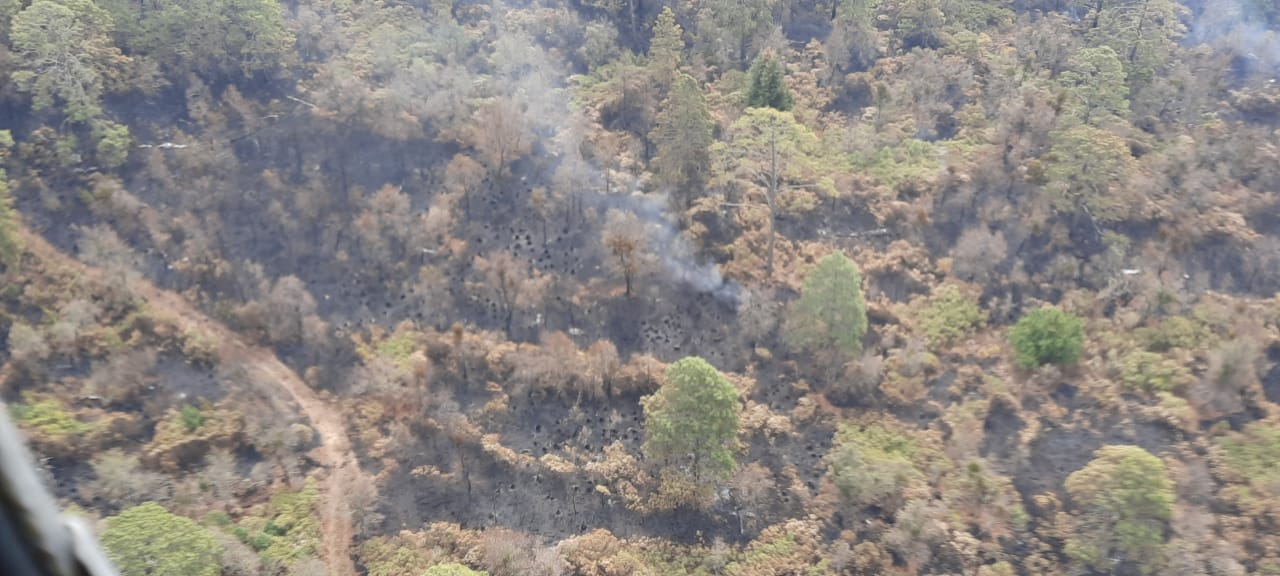 Incendio Forestal Tepozteco
