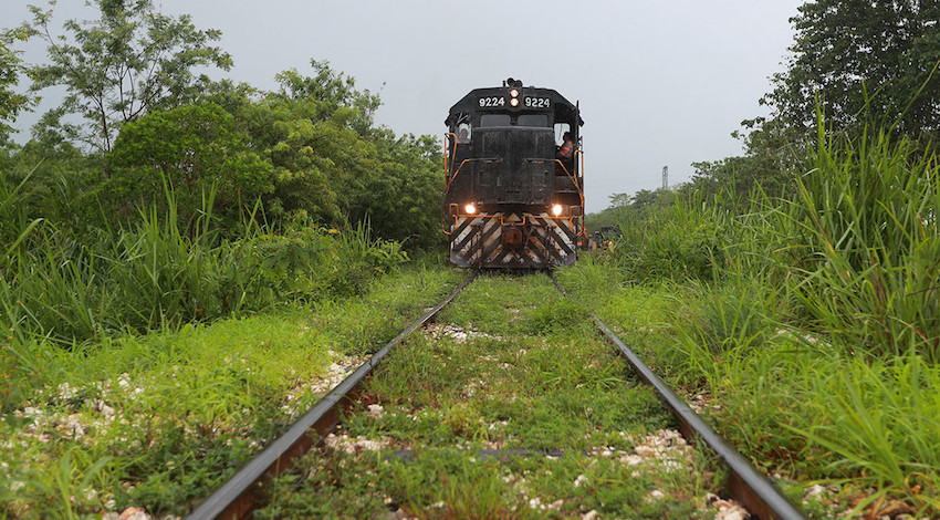 Tren Maya