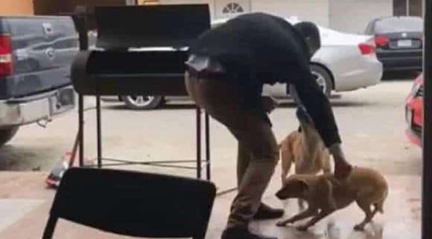 Hombre apuñaló perro