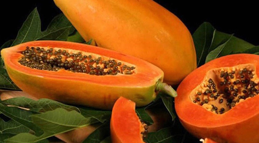 Papaya mexicana