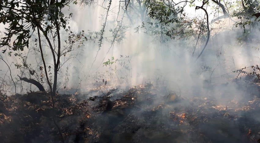 Incendio forestal Tepoztlán, Morelos