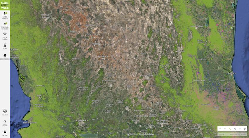 Deforestación México 2020