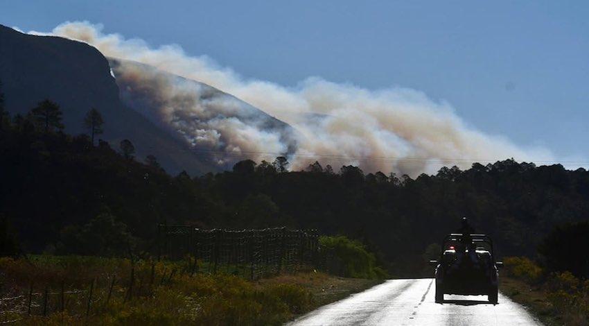 Incendio forestal Arteaga, Coahuila
