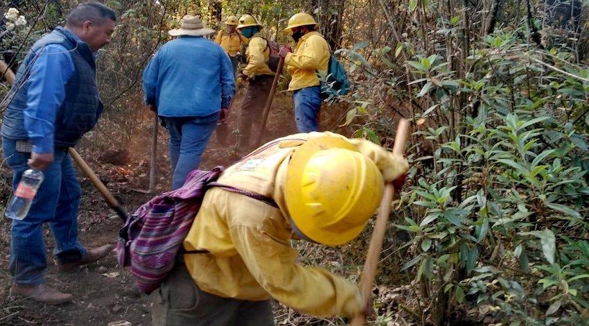Incendio Forestal El Tepozteco