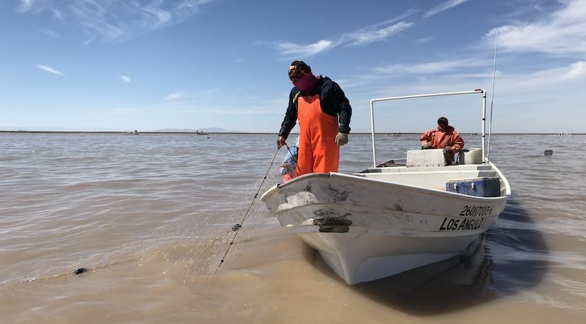Pescadores Golfo de Santa Clara, Sonora