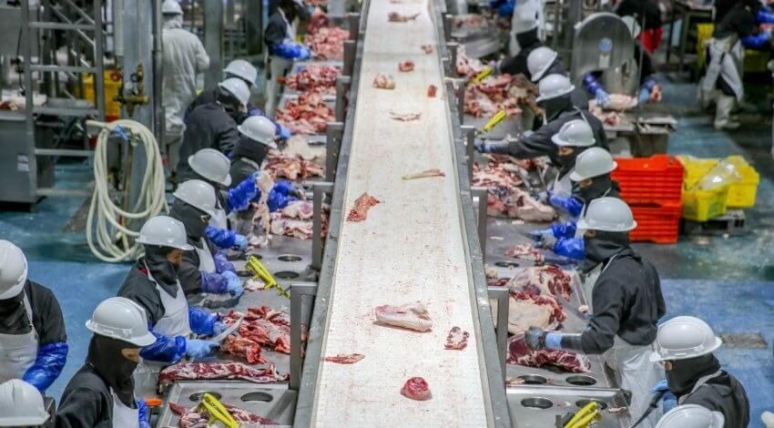 México se consolida en séptimo lugar en ranking mundial como productor de proteína animal