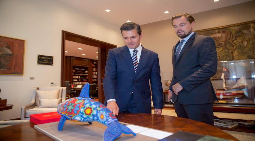 Peña - DiCaprio por la Vaquita Marina