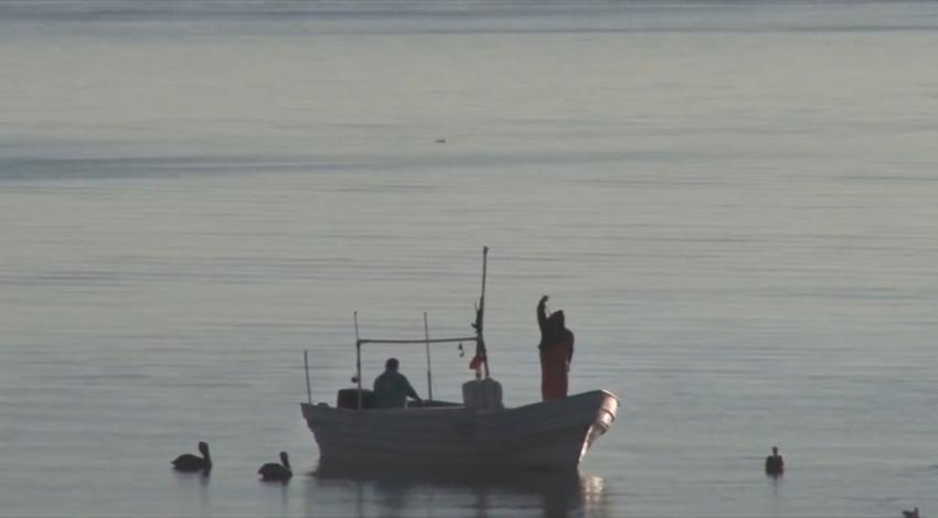 Pescadores San Felipe