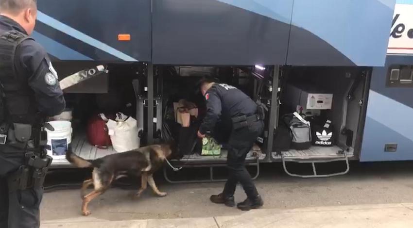 Policía Federal Cocaína