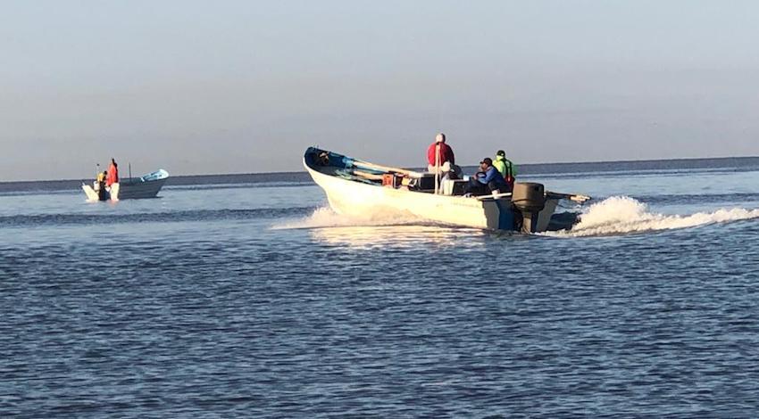 Pescadores Alto Golfo de California