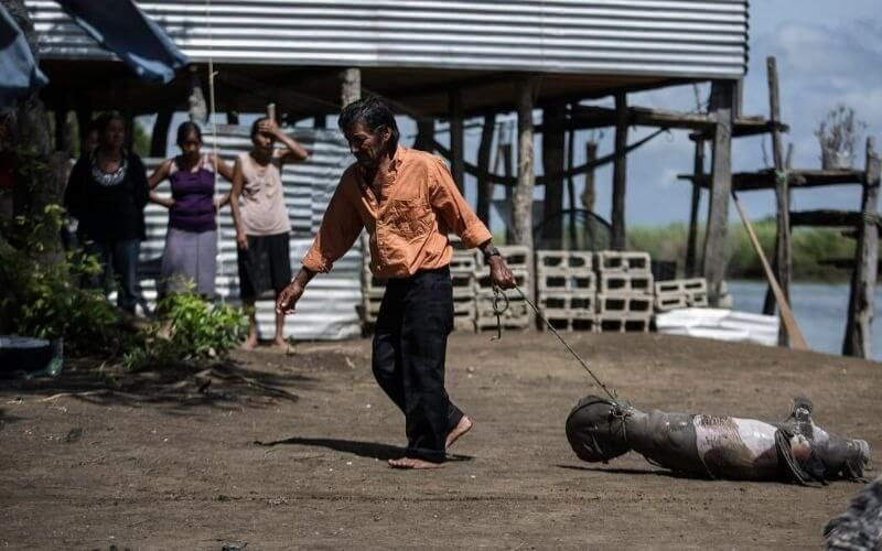 Muerte masiva de manatíes en Tabasco
