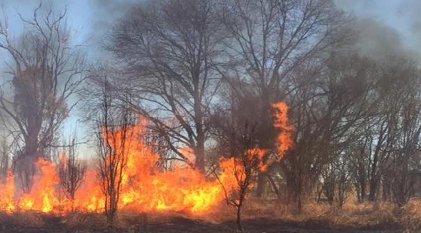 Incendio Durango