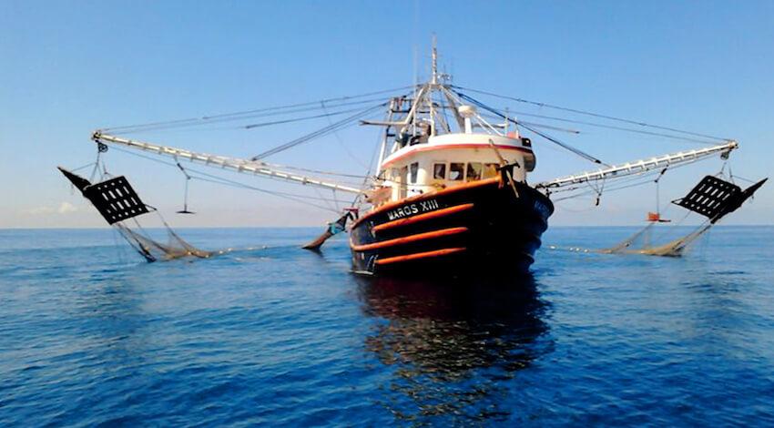 Barco camaronero