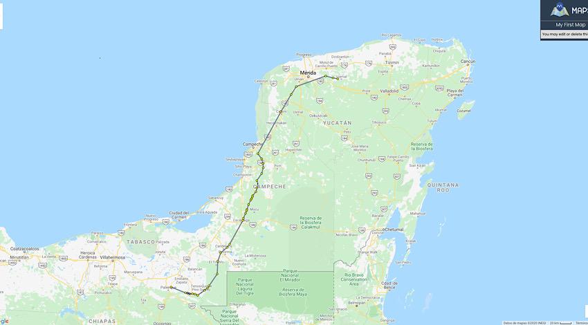 Pasos de fauna Tren Maya