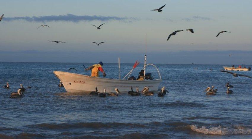 Pescadores ribereños
