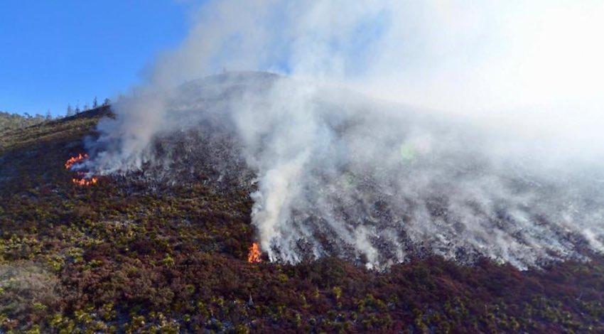 Incendio Coahuila NL